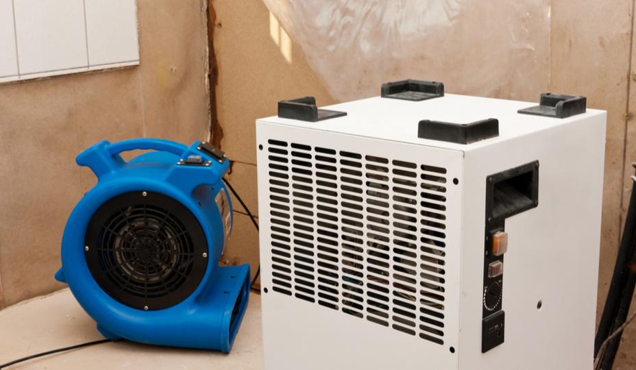 secadoras después de limpiar los moldes