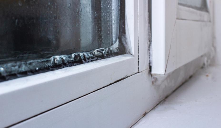 helado en la ventana