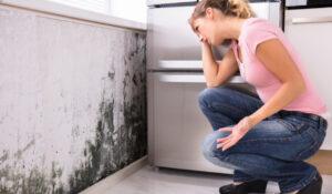 Molduras: descontaminarse en 4 pasos